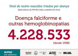 Recém-nascidos triados: DF e outras hemoglobinopatias